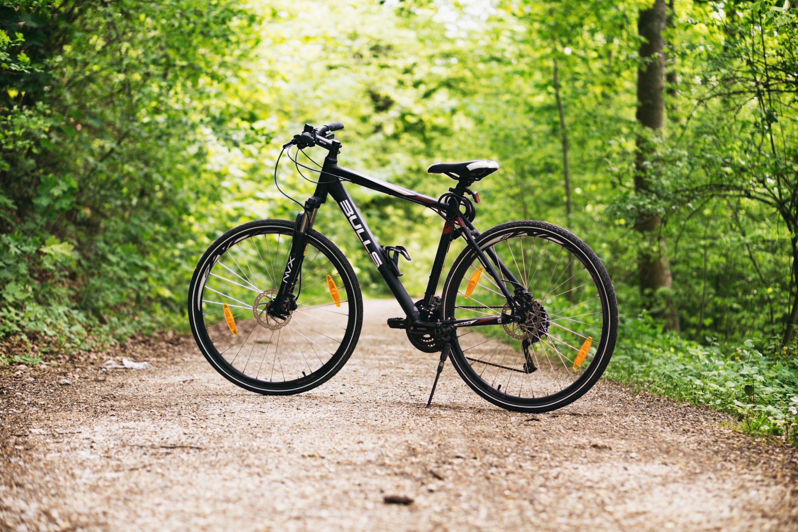 E Bike Aktien